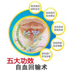 自血回输术的五大功效